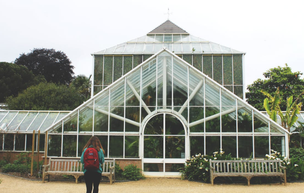 greenhouse image.PNG