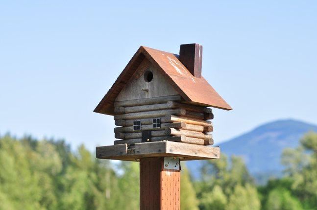 bird house image 1.jpg